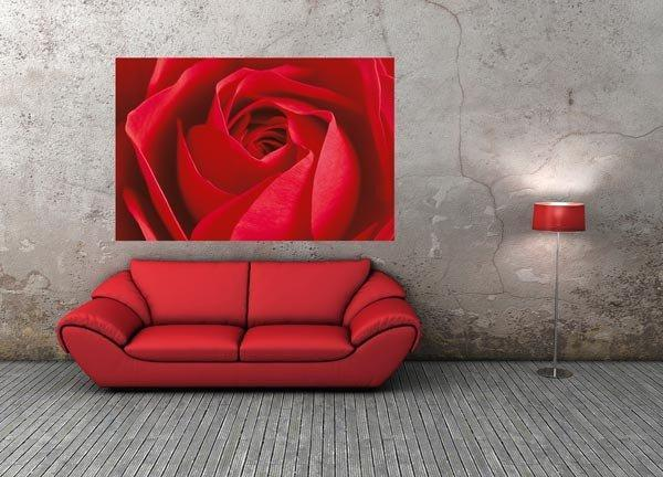 Limportant Cest La Rose Wall Mural - Window Film World