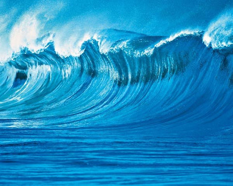 The Wave Wall Mural - Window Film World