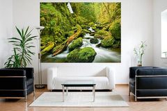 Green Canyon Cascades Wall Mural - Window Film World