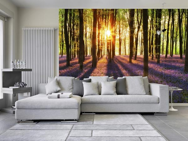 Woodland At Dawn Wall Mural - Window Film World