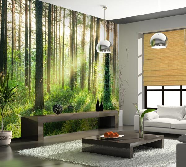 Sunset in the Woods Wall Mural - Window Film World