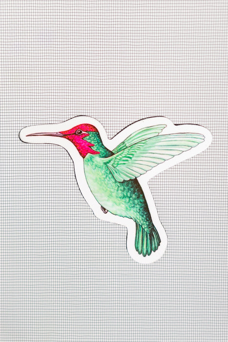 "Hummingbird Screen Door Magnets (5.25"" x 4.75"" ) - Window Film World"