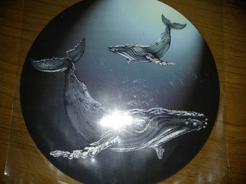 "Humpback Whales Screen Door Saver  (5.35""x5x35"") - Window Film World"