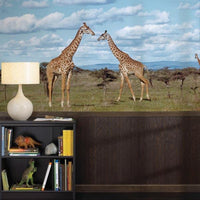 Giraffes Wall Mural - Window Film World