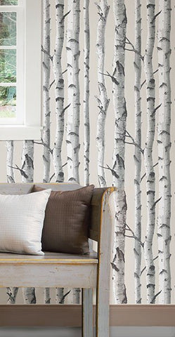 Birch Tree Peel And Stick Wallpaper - Window Film World