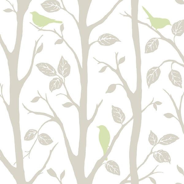 Grey and Green Sitting In A Tree Peel And Stick Wallpaper - Window Film World