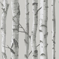 Mountain Birch Grey Peel and Stick Wallpaper - Window Film World