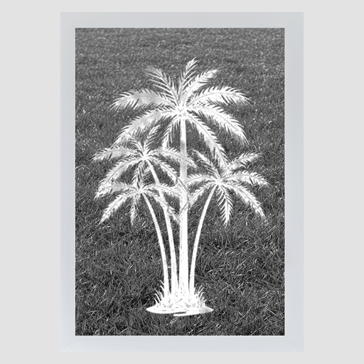 Oval Palm Tree Center Reverse | Static Cling - Window Film World