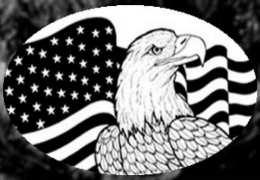 Horizontal Flag n Eagle Etched Glass Decals (Static Cling) - Window Film World