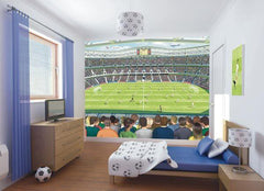 Football Crazy Wall Mural - Window Film World