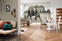 Elephant Mural - Window Film World