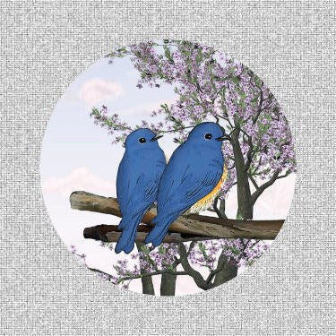 "Blue Birds Screen Door Magnets (5.75"" X 5.75"") - Window Film World"