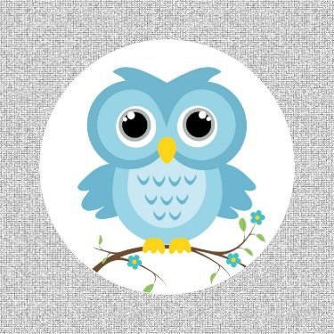 "Little Blue Owl Screen Door Magnets (5.75"" x 5.75"") - Window Film World"