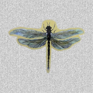 "Dragonfly Screen Door Saver Magnets (6.25"" X 4.25"") - Window Film World"