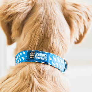 KY Dog Collars