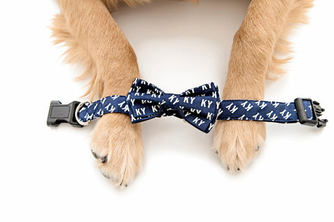 Navy KY Dog Collars - Barrel Down South
