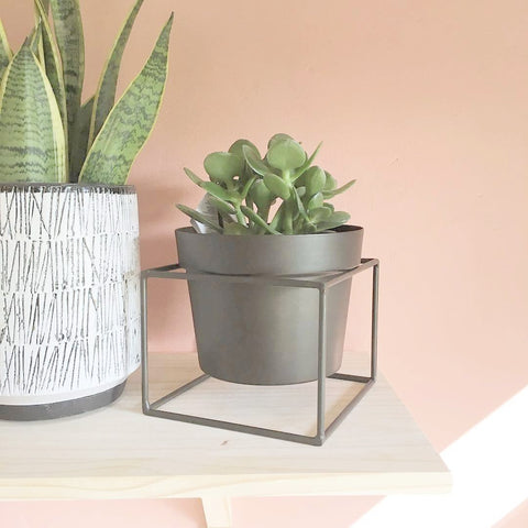 Plant pot with square stand