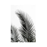 Palm Leaves Print-Nookoo