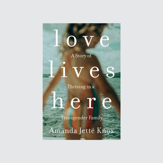 "Cover of book depicting the title ""Love Lives Here,"" as well as a child blurred out in the foreground and a lake in the background."