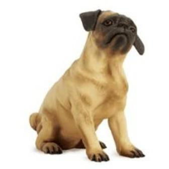 Realistic Painted Pug Dog Form Mannequin by Goldsmith