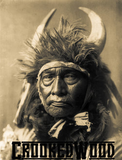 Bull Chief ~ Apsorake by Edward Curtis