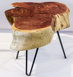 Juniper Stump Table No. 060