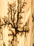 Lichtenburg fractal wood burning