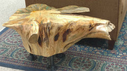 Pine Root Coffee Table No. 052