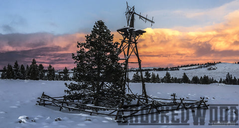 Windmill in Winter ~ Natural edge frame