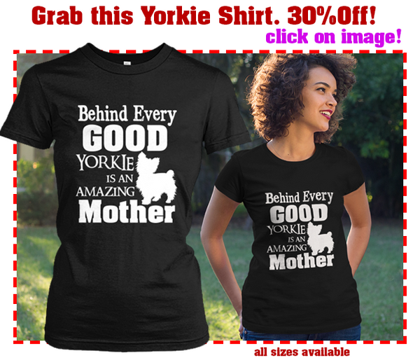 Grab this yorkie shirt