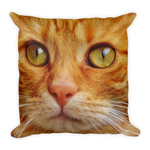 Stunning cat eyes Square Pillow