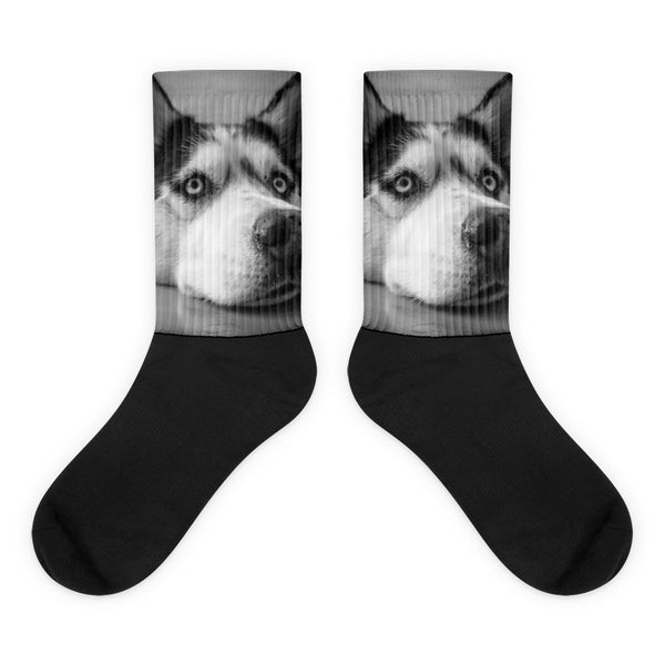 Siberian Husky Black foot socks