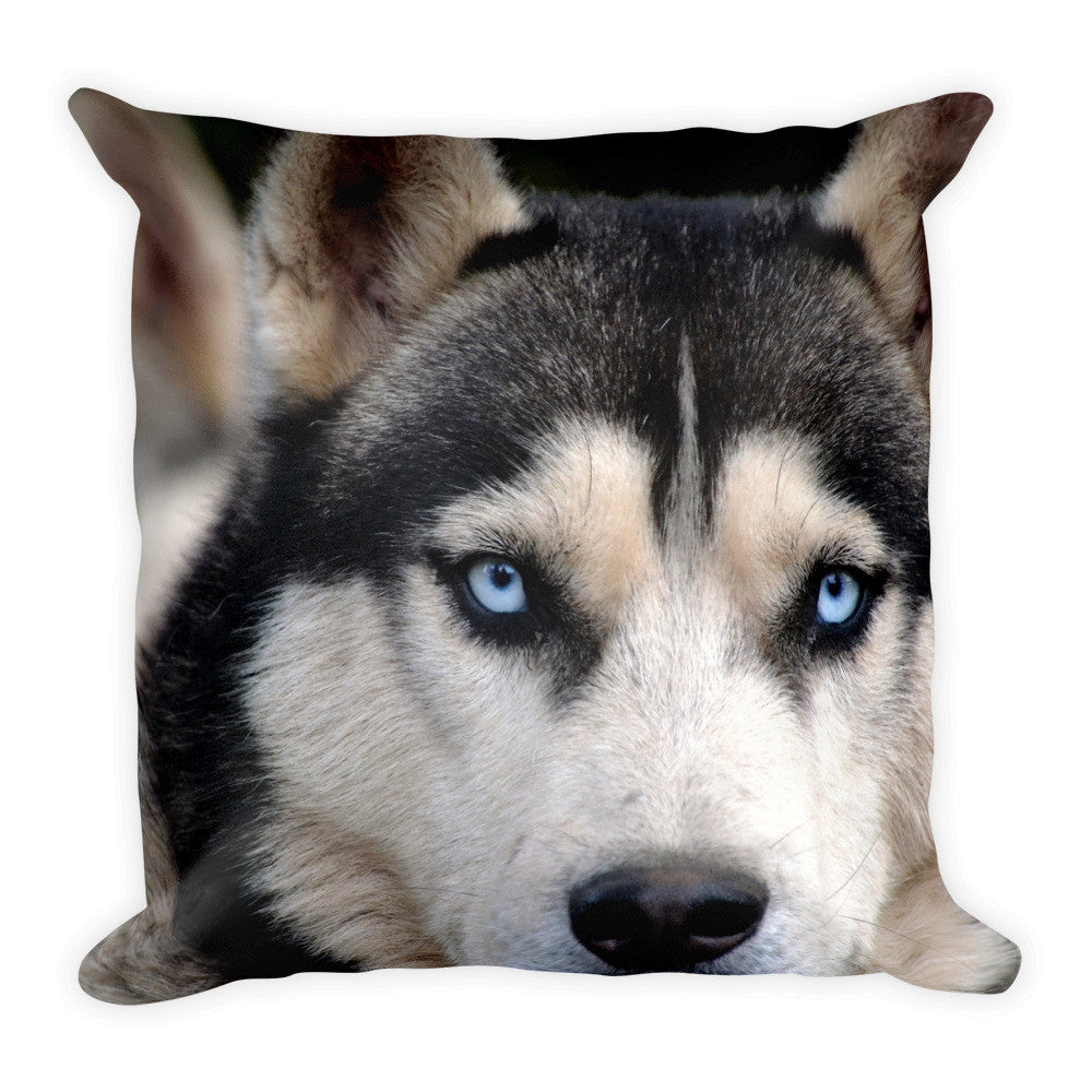 Siberian Husky Blue Eyes Square Pillow