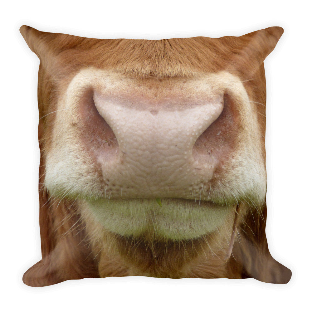 "Love Cattle? This 18""x18"" Pillow My Be Your Newest Decor."