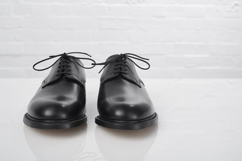 CALF LEATHER SHOES AND THEIR CARE