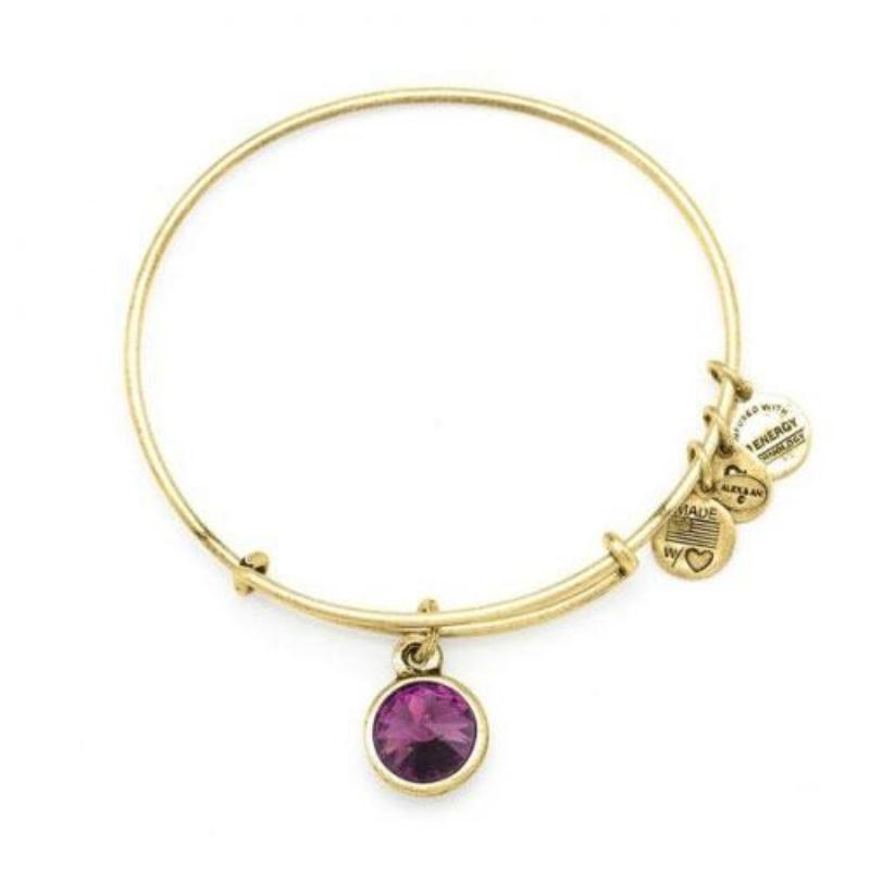 Alex & Ani - Crystal Birthstone February - Yellow Gold