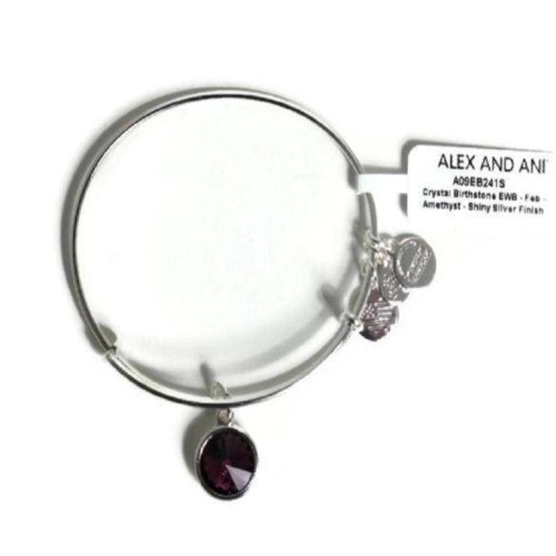 Alex & Ani - Crystal Birthstone - February Amethyst - Shiny Silver