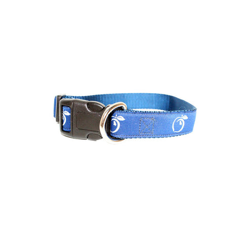 Logo Ribbon Canvas Belt