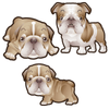Bulldog Dog Set of 3 Decals-Animals-Decal Venue