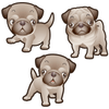 Pug Dog Set of 3 Decals | Animals | DecalVenue.com