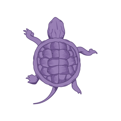 Sea Turtle Decal-Animals-Decal Venue