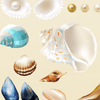Beautiful Seashells and Pearls Set of 21 Decals [002] | Nature & Nautical | DecalVenue.com