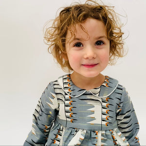"Eddie & Bee ""Luna"" collar dress in Blue/ Grey  ""Fly away home"" print organic cotton  with Sparkly silver trimmed collar."