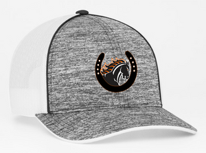 Delaware Pacers Hat
