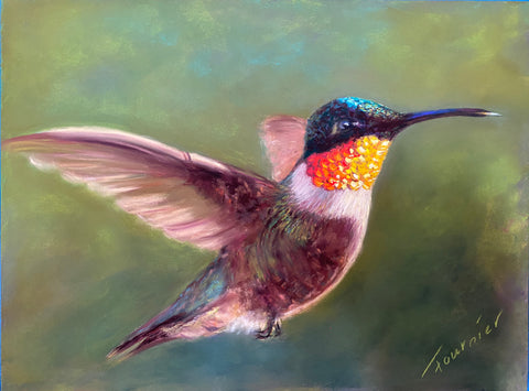 """In Flight"" 9""x12"" Pastel on Board"