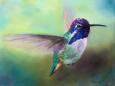 """In Flight"" Pastel on Pastel Board 15""x18"" Framed"