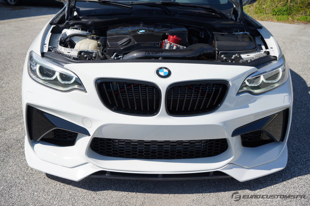 ECPR - Carbon Fiber Lip for F22 with M2 Style Front Bumper