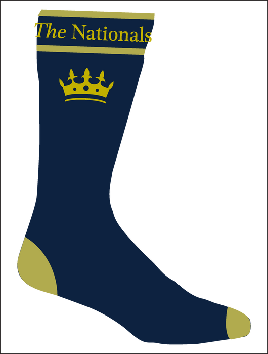 Show Horse Nationals Gold Navy Socks