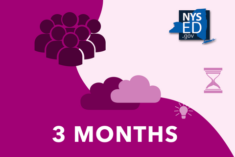 NYSED Courses - 3 Months Access (School)