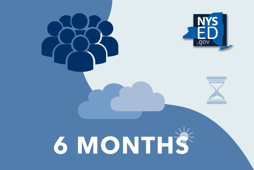 NYSED Courses - 6 Months Access (School)
